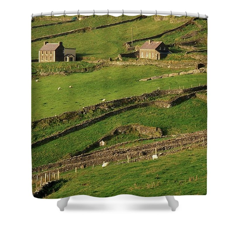 Agriculture Shower Curtain featuring the photograph Slea Head, Dingle Peninsula, County by Richard Cummins