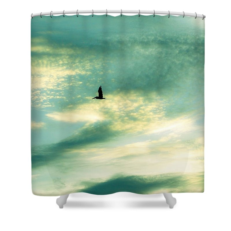 Solo Shower Curtain featuring the photograph Solo Flight by Marilyn Hunt
