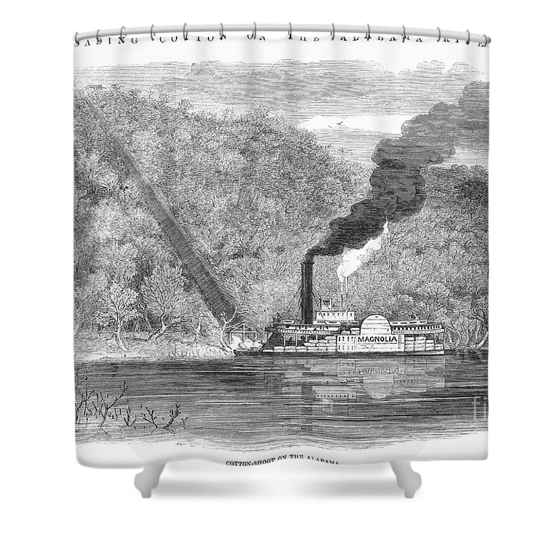 1861 Shower Curtain featuring the photograph South: Cotton, 1861 by Granger