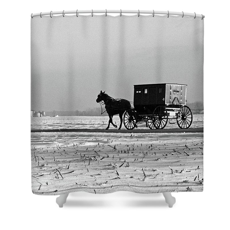 Amish Shower Curtain featuring the photograph Stark Winter Buggy by David Arment