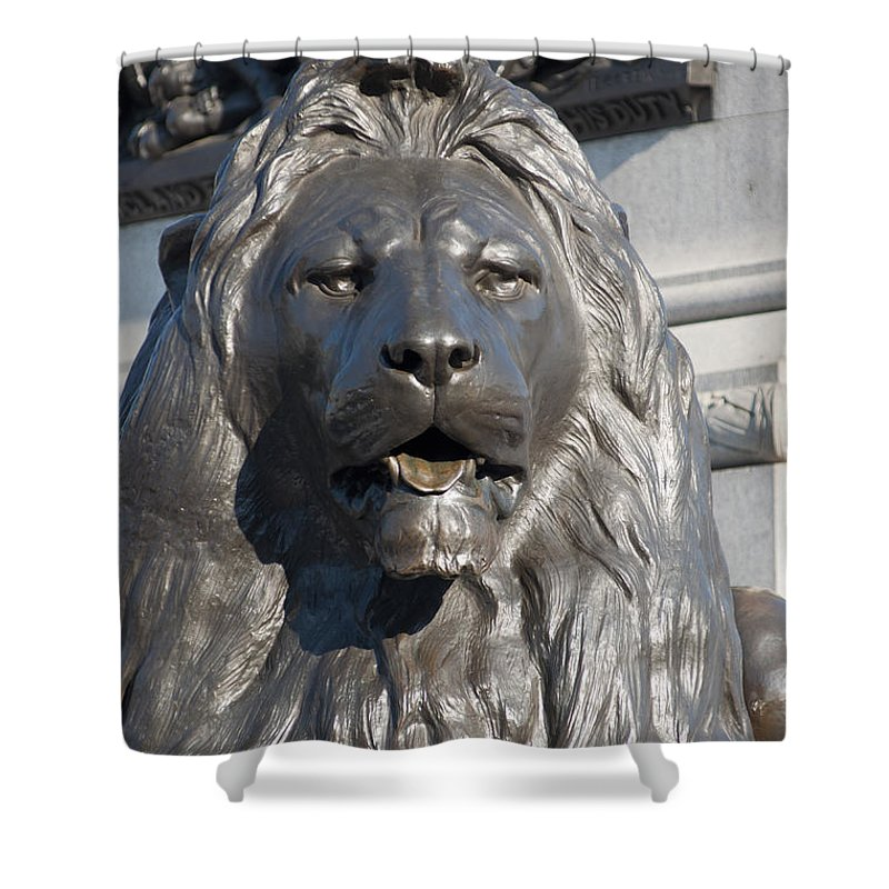 2011 Shower Curtain featuring the photograph Trafalgar Square Lion by Andrew Michael