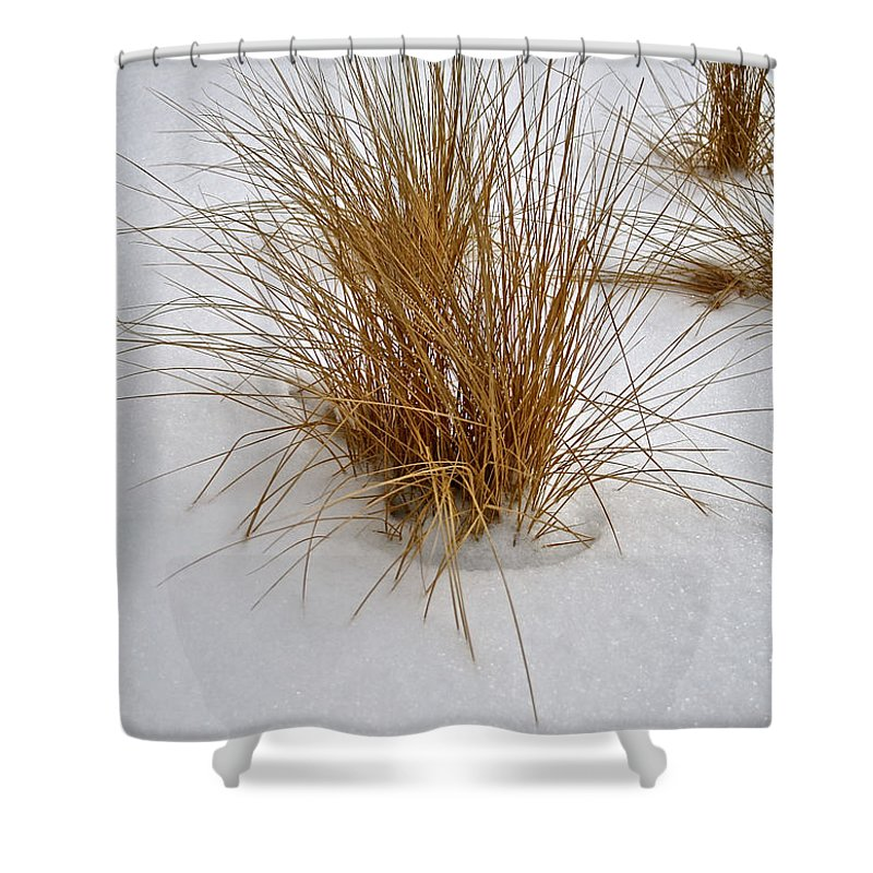 Snow Shower Curtain featuring the photograph Winter Whisper by Susan Herber