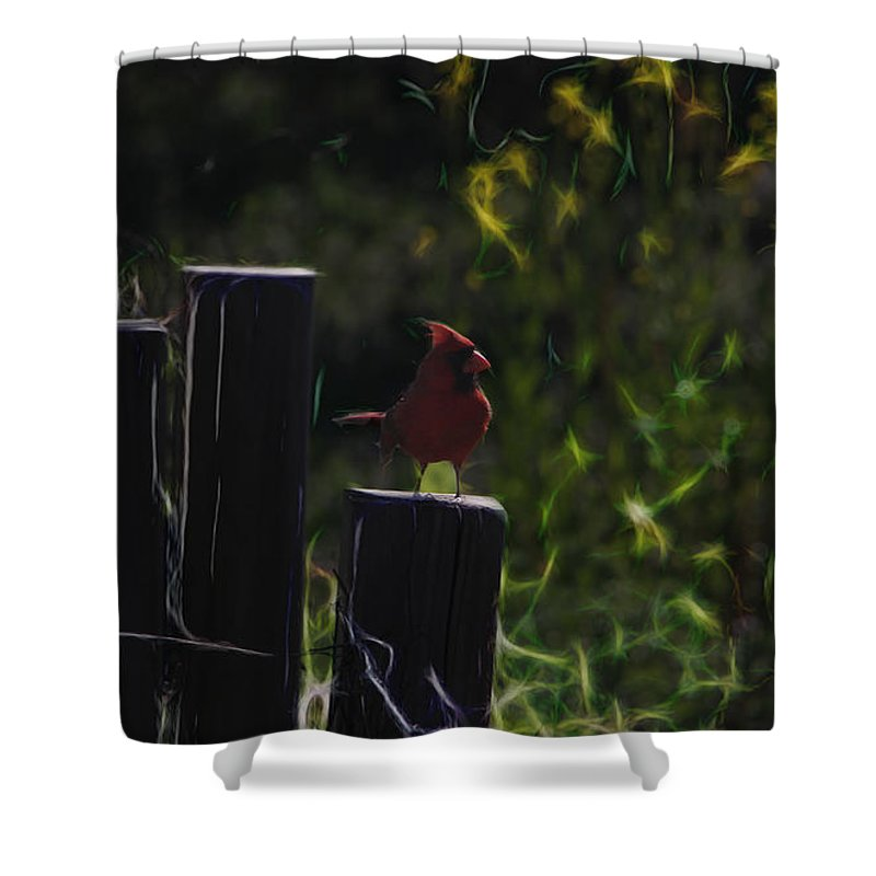 Tn Shower Curtain featuring the photograph 1384 Posted by Ericamaxine Price