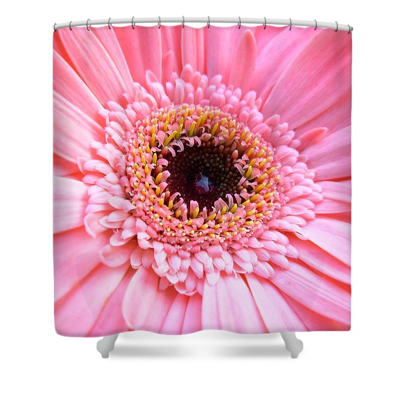 Gerbera Photographs Shower Curtain featuring the photograph 1808c by Kimberlie Gerner