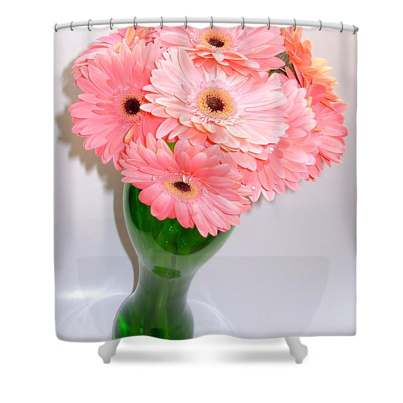 Gerbera Photographs Shower Curtain featuring the photograph 1862-001 by Kimberlie Gerner