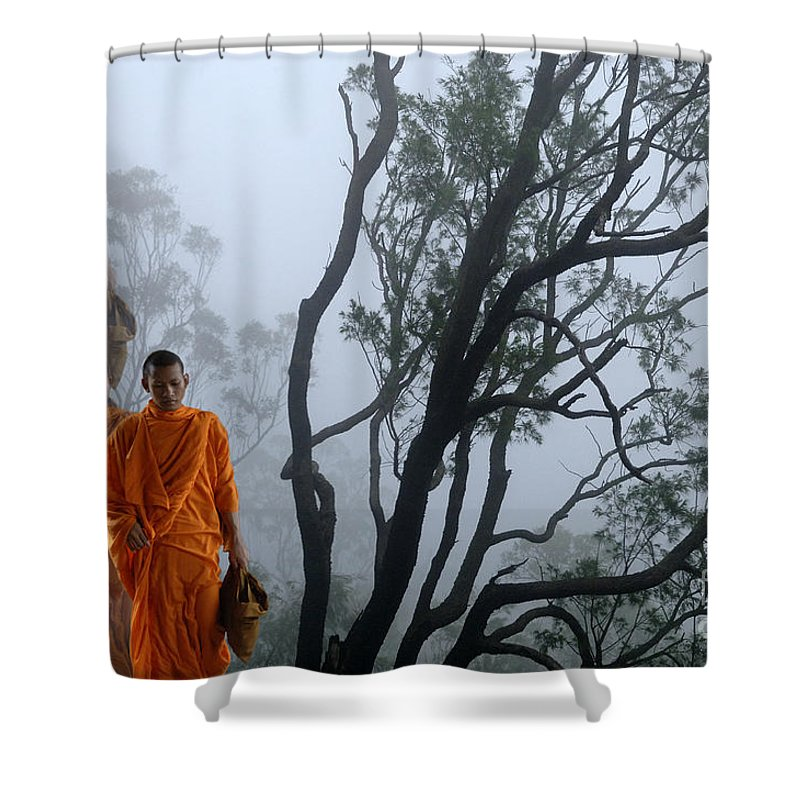Forest Shower Curtain featuring the photograph Enchanted Forest by Bob Christopher