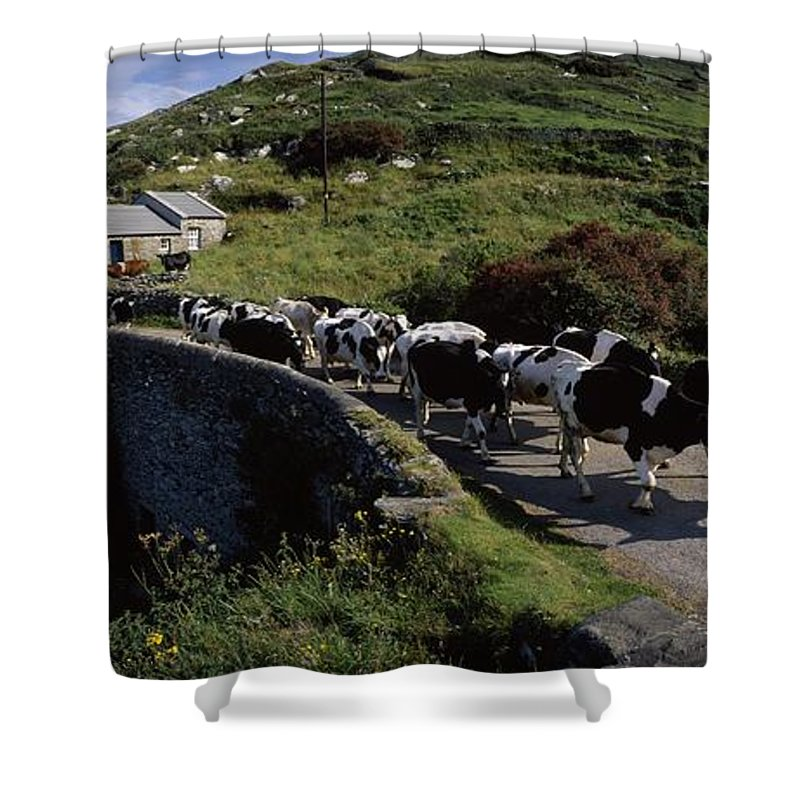 Architecture Shower Curtain featuring the photograph Slea Head, Dingle Peninsula, Co Kerry by The Irish Image Collection