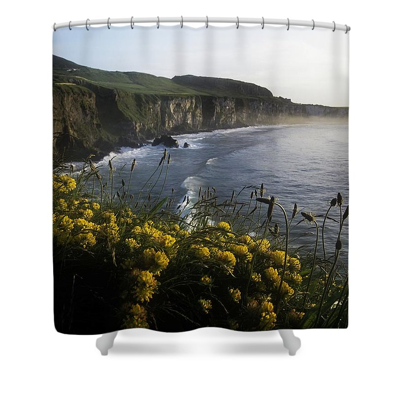 Coast Shower Curtain featuring the photograph Wildflowers At The Coast, County by The Irish Image Collection