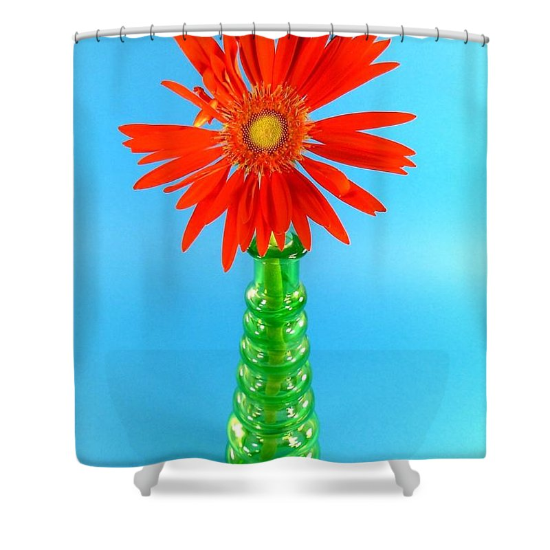 Gerbera Photographs Shower Curtain featuring the photograph 2277c2-001 by Kimberlie Gerner