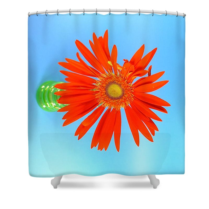 Gerbera Photographs Shower Curtain featuring the photograph 2279c2 by Kimberlie Gerner