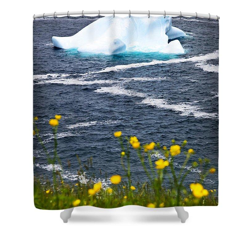 Iceberg Shower Curtain featuring the photograph Melting Iceberg by Elena Elisseeva