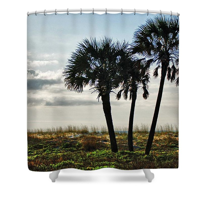 Alabama Photographer Shower Curtain featuring the digital art 3 Palms On The Beach by Michael Thomas