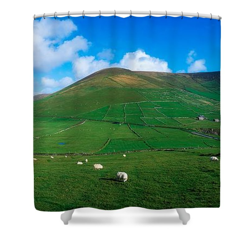 Coast Shower Curtain featuring the photograph Slea Head, Dingle Peninsula, Co Kerry by The Irish Image Collection