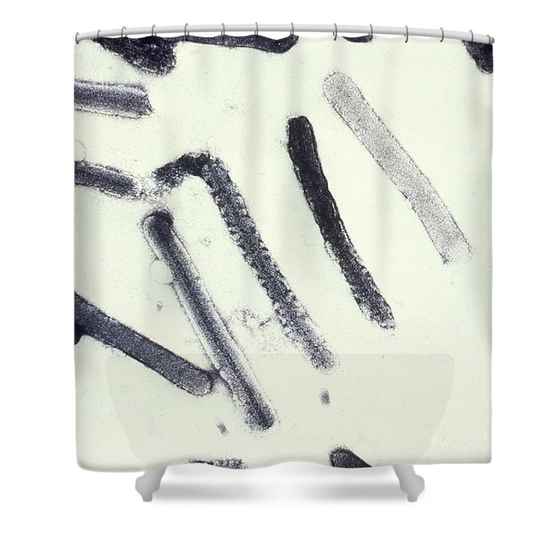 Filovirus Shower Curtain featuring the photograph Marburg Virus, Tem by Science Source