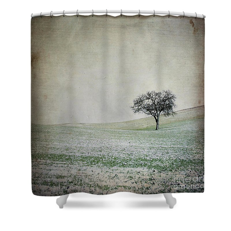 Wintry Shower Curtain featuring the photograph Textured Tree by Bernard Jaubert