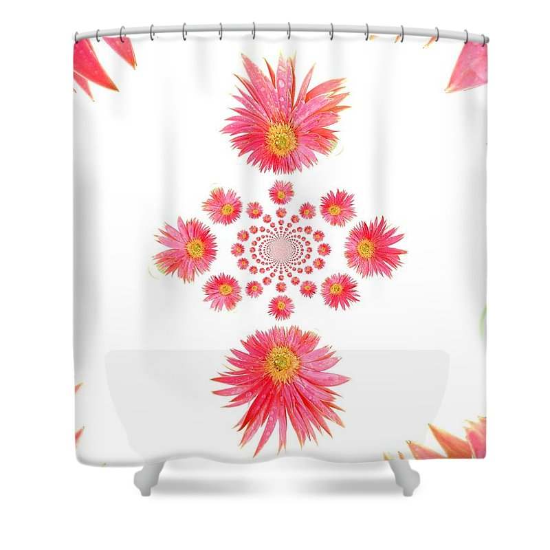 Gerbera Photographs Shower Curtain featuring the photograph 5466pn1 by Kimberlie Gerner