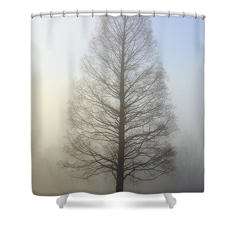 Oregon Shower Curtain featuring the photograph Oregon Cascades, Oregon, United States by Craig Tuttle