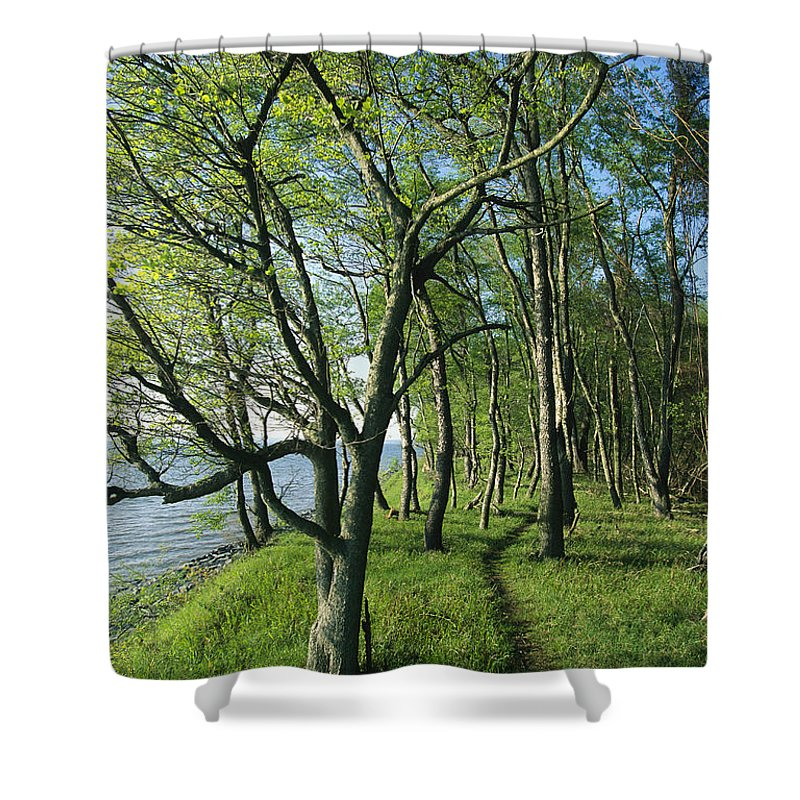 North America Shower Curtain featuring the photograph A Dirt Path Winds Through A Waterside by Skip Brown