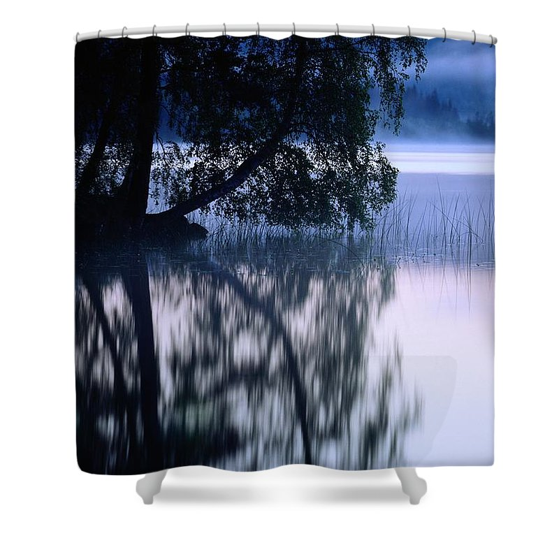Plants Shower Curtain featuring the photograph A Large Tree Grows At The Edge by Mattias Klum