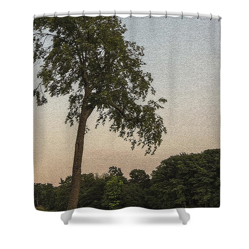 Bench Shower Curtain featuring the photograph A Lonely Park Bench by Darleen Stry