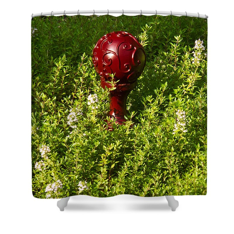 Orb Shower Curtain featuring the photograph A Orb In Thyme by Douglas Barnett