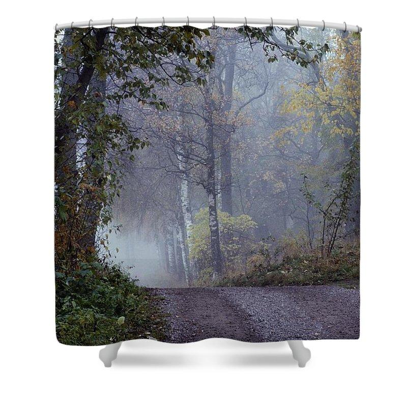 Dirt Roads Shower Curtain featuring the photograph A Road Through A Misty Wood by Mattias Klum