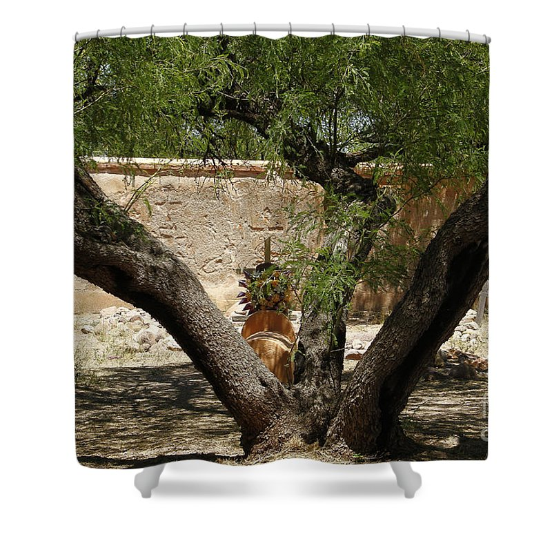Arizona Shower Curtain featuring the photograph A Shady Rest by Kathy McClure
