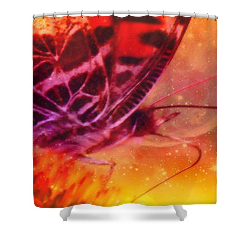Butterfly Shower Curtain featuring the photograph Above And Beyond by Linda Sannuti