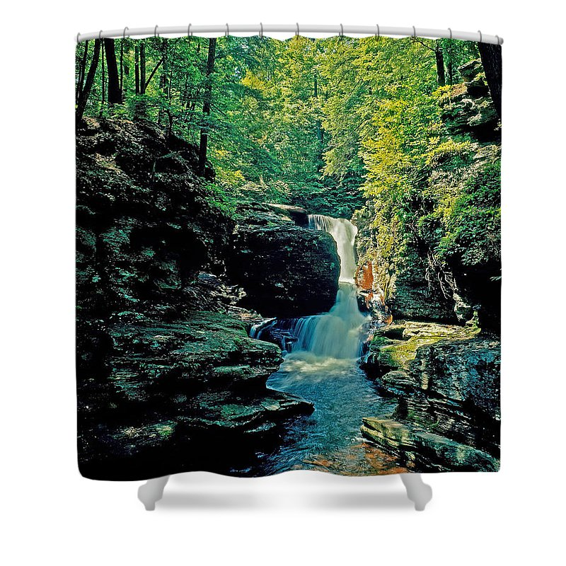 Pennsylvania Shower Curtain featuring the photograph Adams Falls by Rich Walter