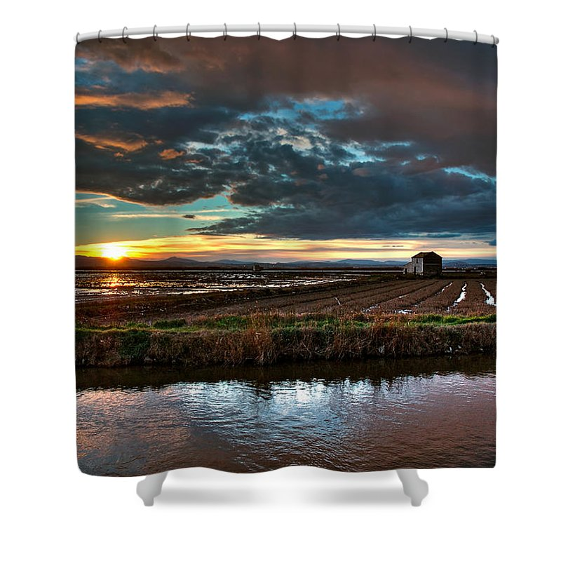 Albufera Lagoon Shower Curtain featuring the photograph Albufera Rice. Valencia. Spain by Juan Carlos Ferro Duque