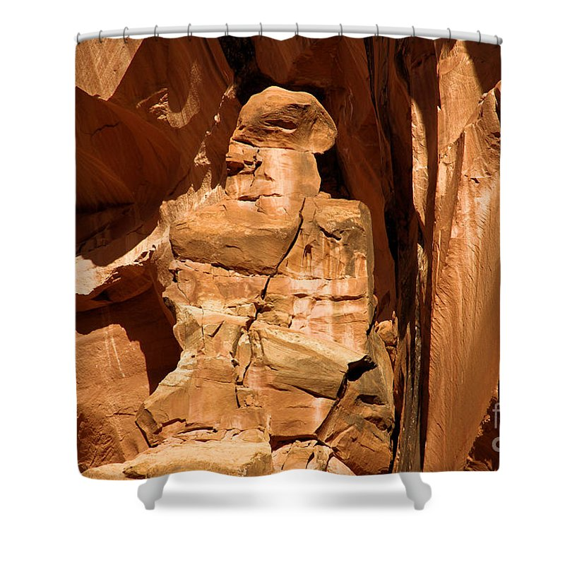 Alien Encounter Shower Curtain featuring the photograph Alien Encounter by Adam Jewell