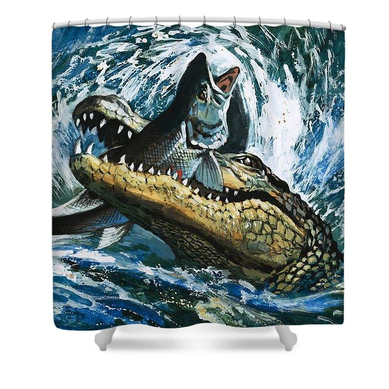 Alligator Shower Curtains
