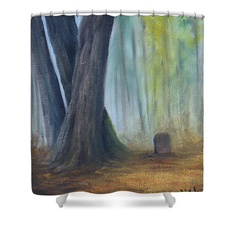 Cemetery At Jay Cook State Park Shower Curtain featuring the painting Alone by Joi Electa
