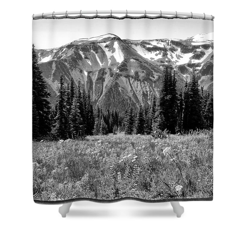 Mount Rainier Shower Curtain featuring the photograph Alpine Meadow Viii At Mount Rainier by David Patterson