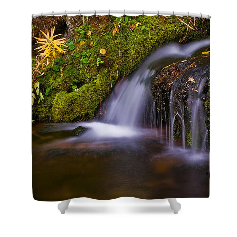 Water Shower Curtain featuring the photograph Alpine Waterfall by Brian Kerls