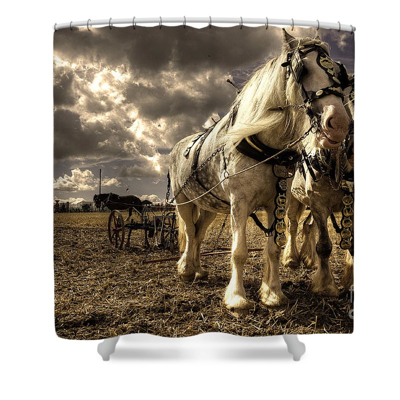Great Shower Curtain featuring the photograph Angel And Lad by Rob Hawkins