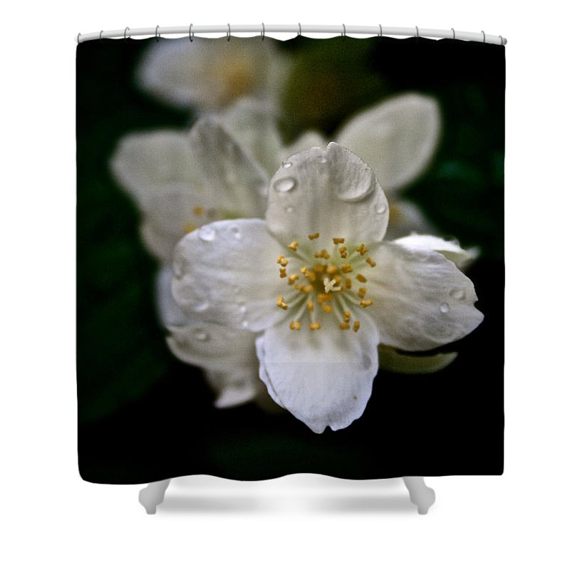 Outdoors Shower Curtain featuring the photograph Angel Teardrops by Susan Herber