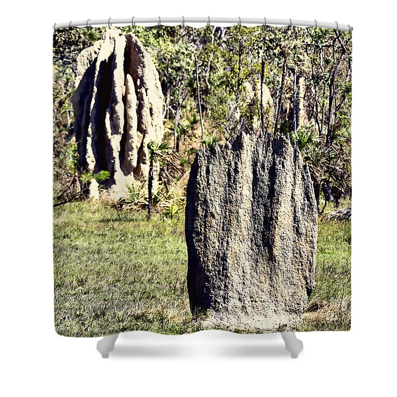 Anthills Shower Curtain featuring the photograph Ant Megastructures-a Trillion Tiny Builders by Douglas Barnard
