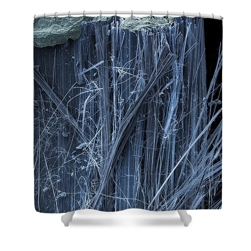 Asbestos Fibers Shower Curtain featuring the photograph Asbestos, Sem by Ted Kinsman