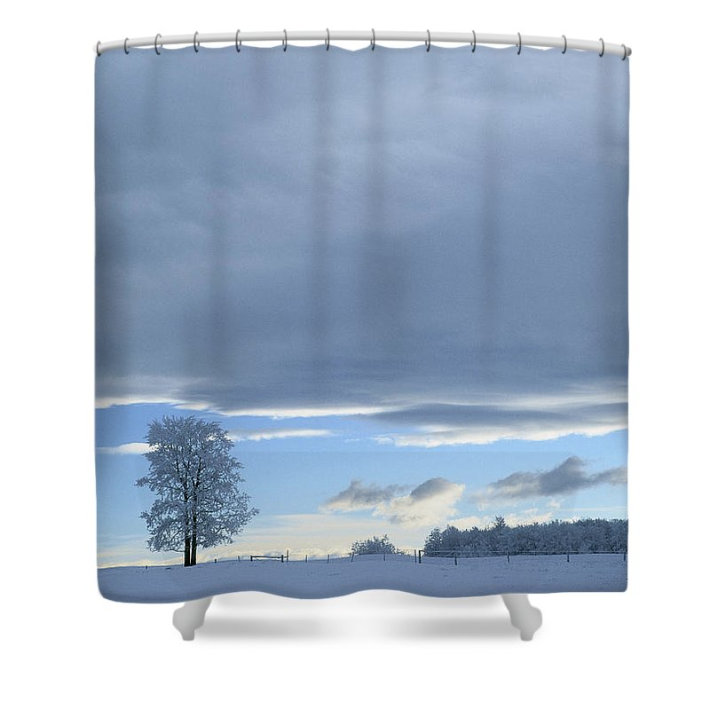 Light Shower Curtain featuring the photograph Aspen Tree And Winter Clouds by Darwin Wiggett