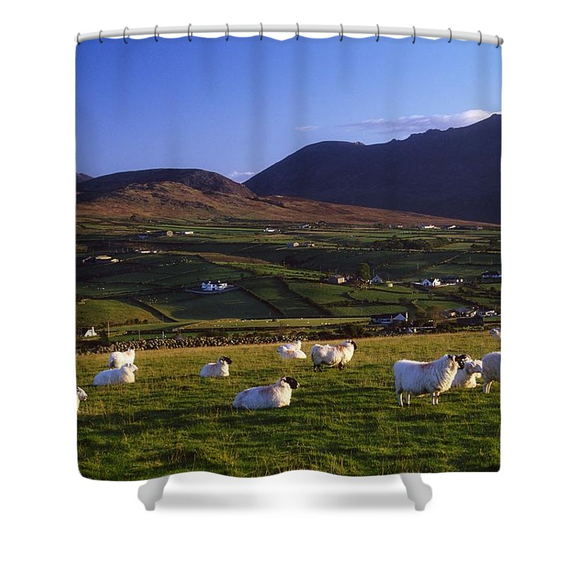 Agriculture Shower Curtain featuring the photograph Aughrim Hill, Mourne Mountains, County by Gareth McCormack
