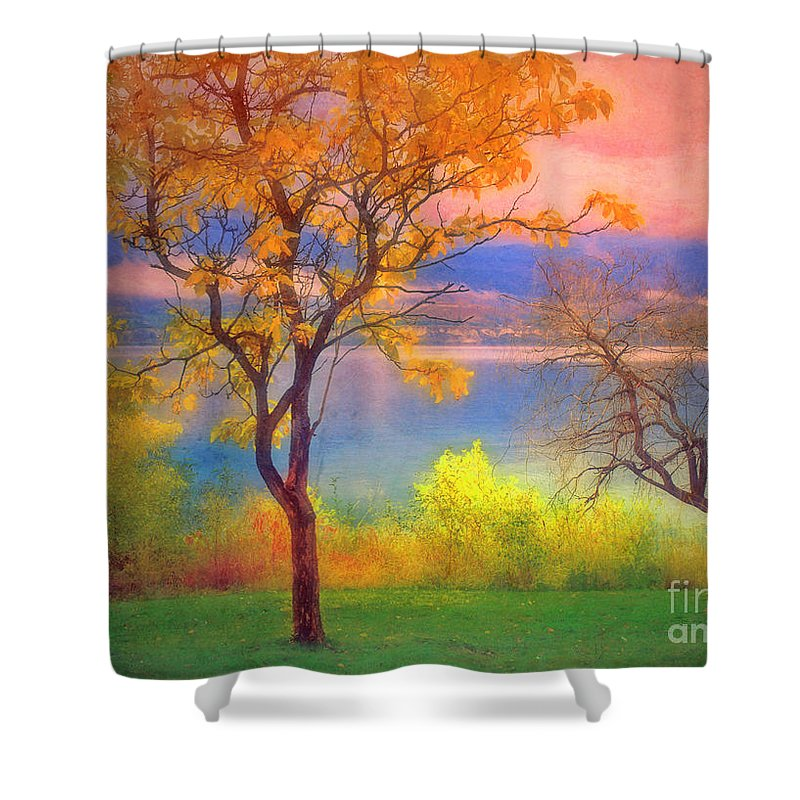 Lake Shower Curtain featuring the photograph Autum Morning by Tara Turner