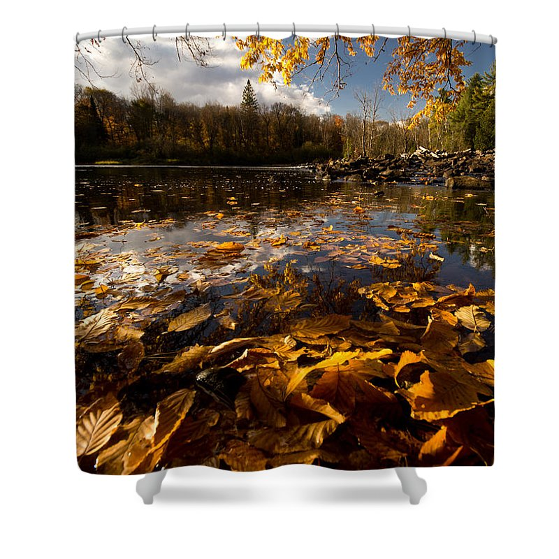 Algonquin Shower Curtain featuring the photograph Autumn At Ragged Falls by Cale Best