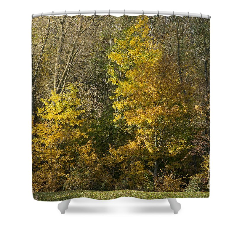 Britain Shower Curtain featuring the photograph Autumn Colours by Andrew Michael