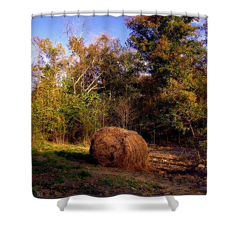 Shower Curtain featuring the photograph Autumn Evening Light by Debbie Portwood