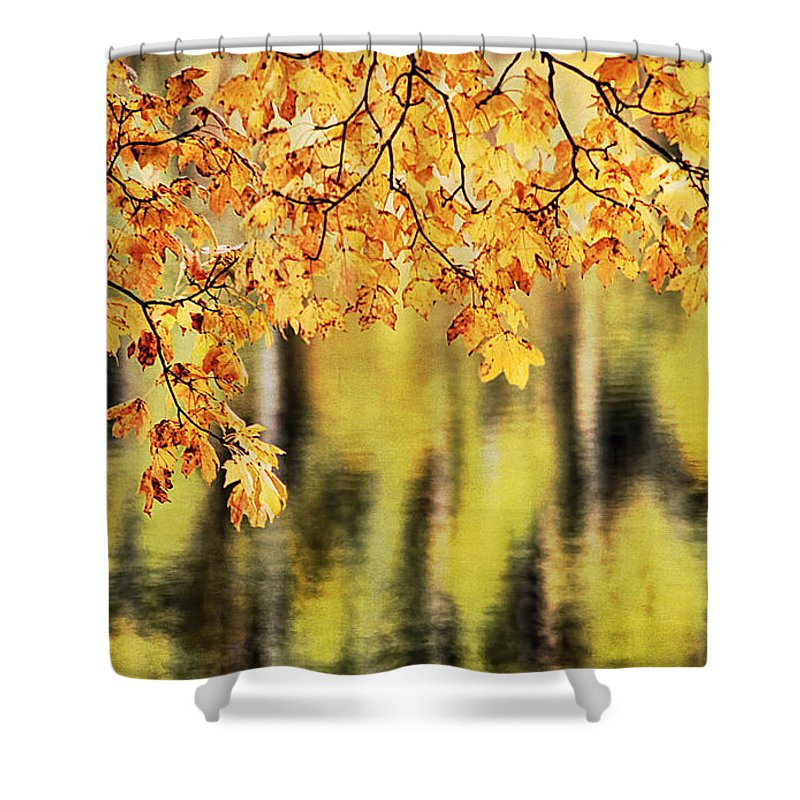 Abstract Shower Curtain featuring the photograph Autumn Glow by Darren Fisher
