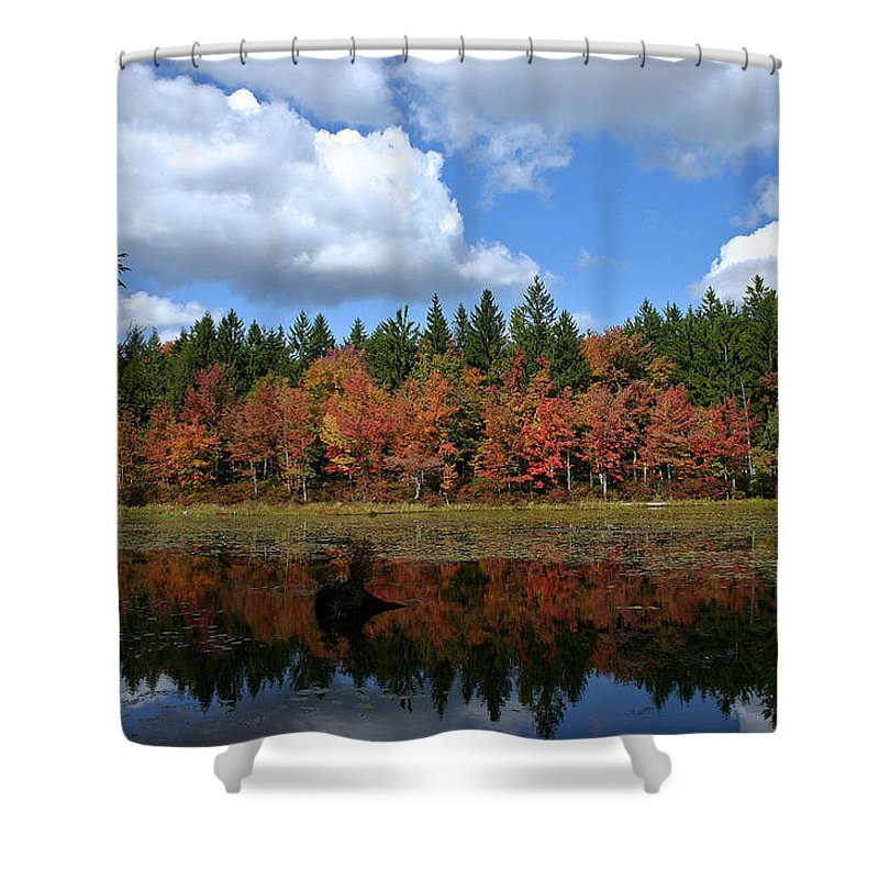 Autumn Shower Curtain featuring the photograph Autumn Reflection by David Rucker