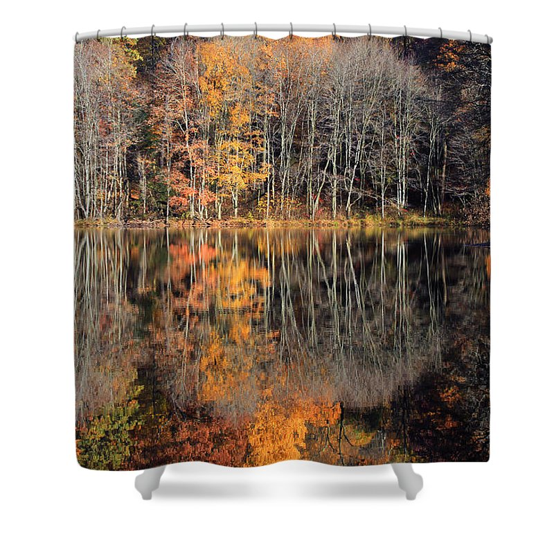 Autumn Shower Curtain featuring the photograph Autumns Art by Karol Livote