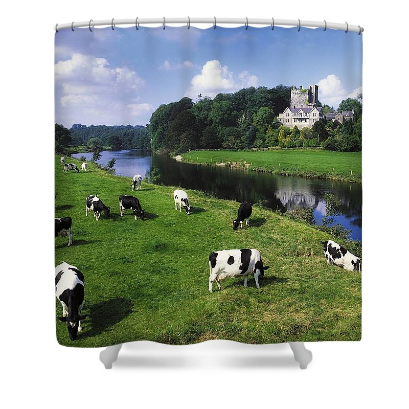 Angular Shower Curtain featuring the photograph Ballyhooley, Co Cork, Ireland Friesian by The Irish Image Collection