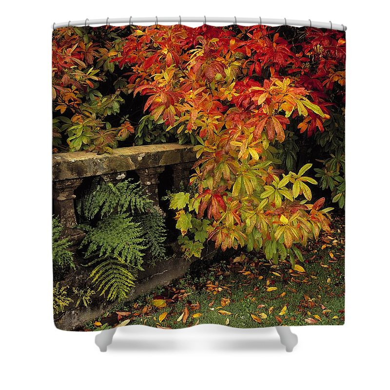 Castlewellan Shower Curtain featuring the photograph Balustrades & Autumn Colours by The Irish Image Collection